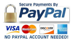 PaypalSecurity 311 A 260x146 - Ron Braaksma - Madness